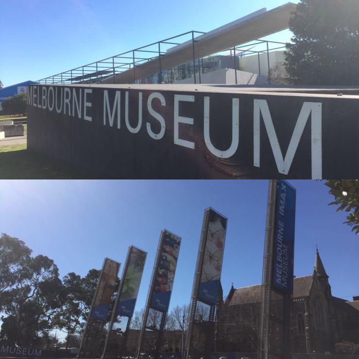 Melbourne Museum2